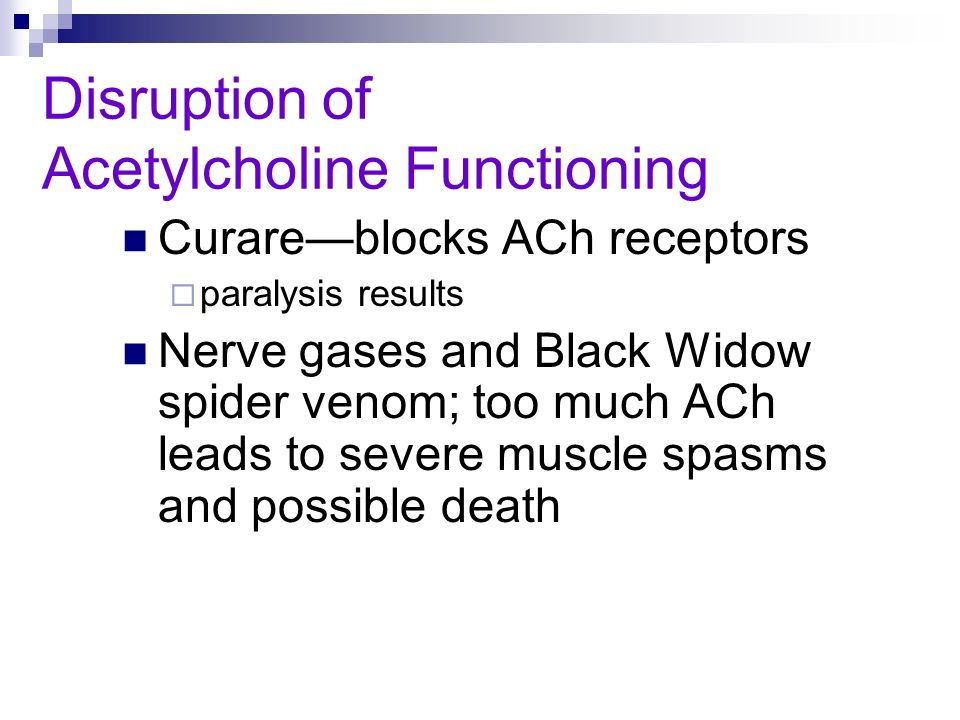 Disruption of Acetylcholine Functioning Curareblocks ACh receptors paralysis results Nerve gases and Black Widow spider venom; too much ACh leads to s