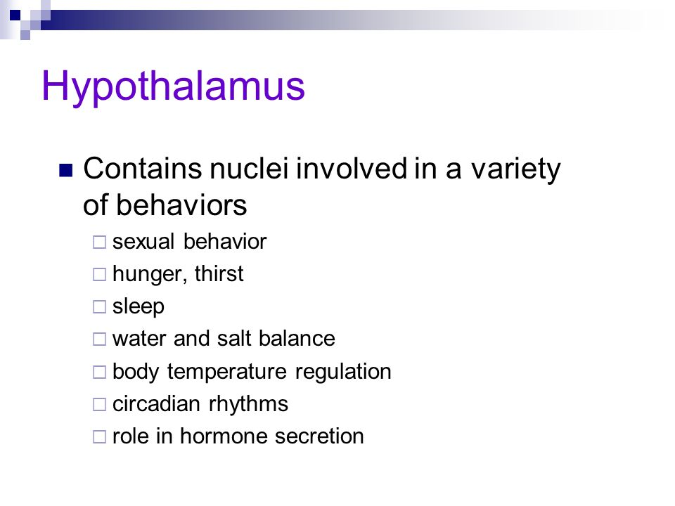 Hypothalamus Contains nuclei involved in a variety of behaviors sexual behavior hunger, thirst sleep water and salt balance body temperature regulatio