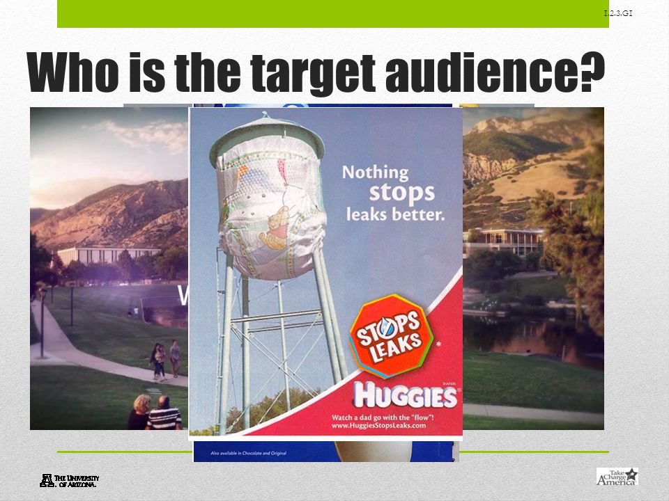 1.2.3.G1 Who is the target audience?