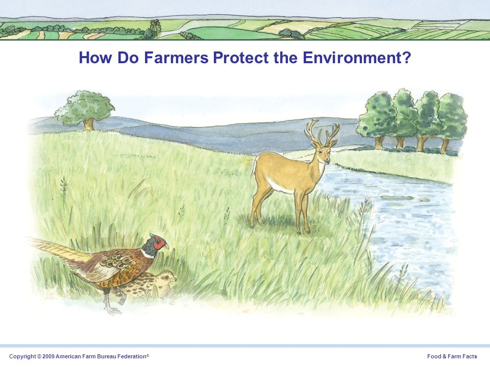 Copyright © 2009 American Farm Bureau Federation ® Food & Farm Facts How Do Farmers Protect the Environment?