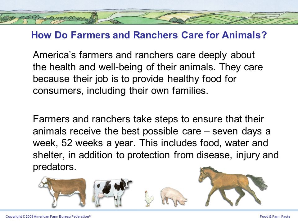 Copyright © 2009 American Farm Bureau Federation ® Food & Farm Facts How Do Farmers and Ranchers Care for Animals? Americas farmers and ranchers care