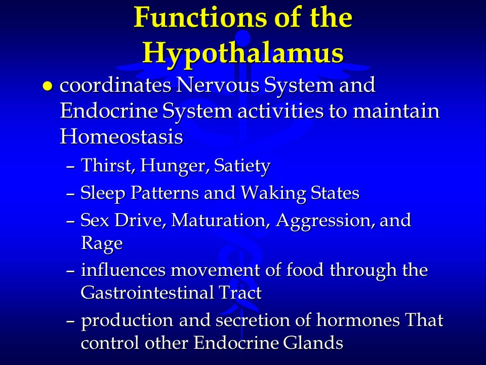 Functions of the Hypothalamus l coordinates Nervous System and Endocrine System activities to maintain Homeostasis –Thirst, Hunger, Satiety –Sleep Pat