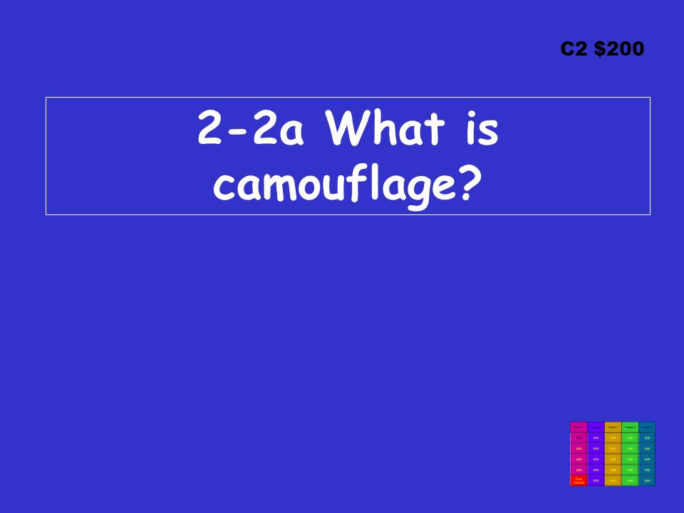 C2 $200 2-2a What is camouflage