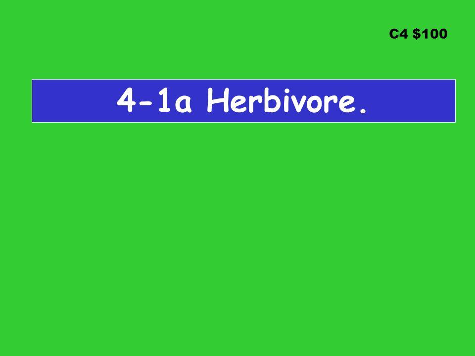 C4 $100 4-1a Herbivore.