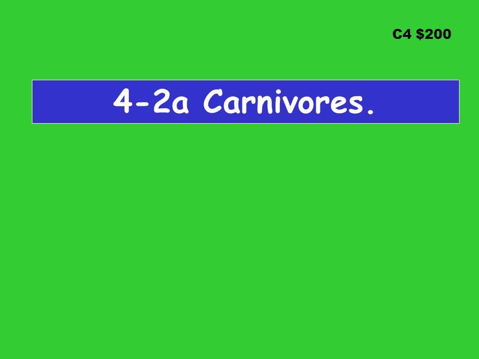 C4 $200 4-2a Carnivores.