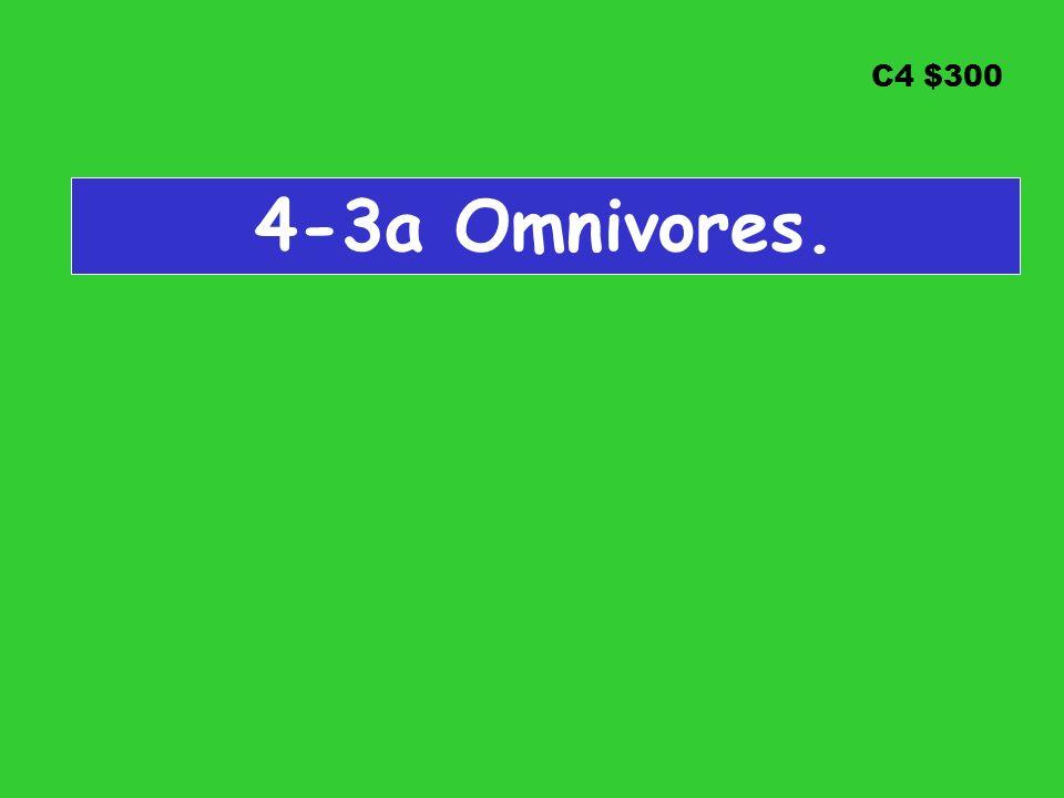 C4 $300 4-3a Omnivores.