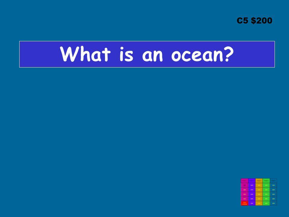 C5 $200 What is an ocean