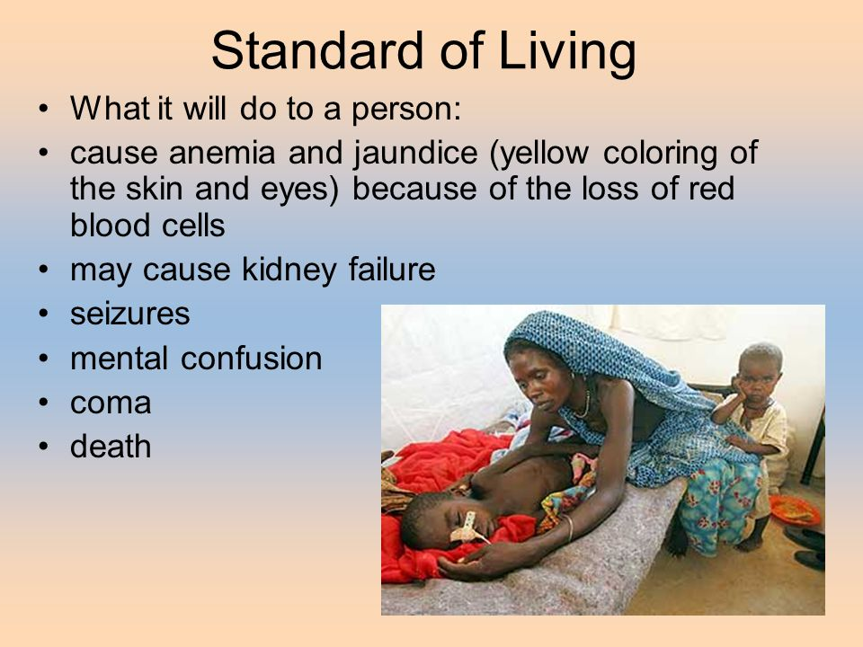 Standard of Living What it will do to a person: cause anemia and jaundice (yellow coloring of the skin and eyes) because of the loss of red blood cells may cause kidney failure seizures mental confusion coma death