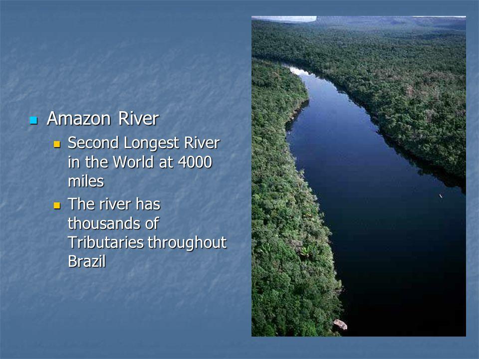 Amazon River Amazon River Second Longest River in the World at 4000 miles Second Longest River in the World at 4000 miles The river has thousands of T