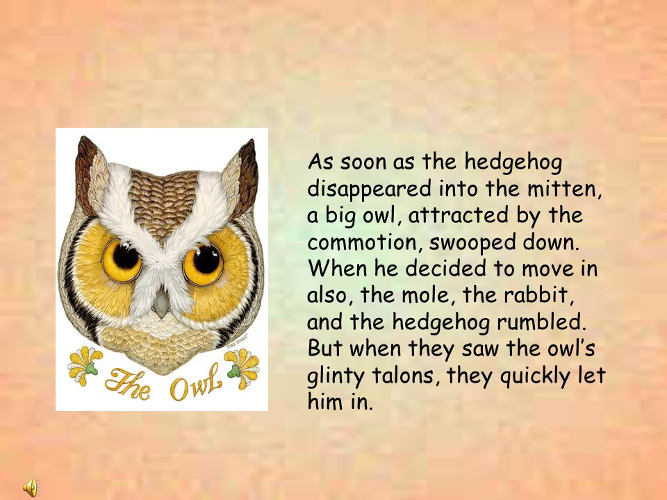 As soon as the hedgehog disappeared into the mitten, a big owl, attracted by the commotion, swooped down. When he decided to move in also, the mole, t