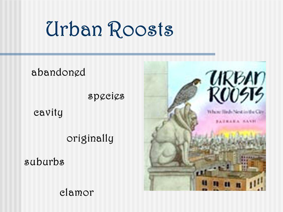 Urban Roosts abandoned species cavity suburbs clamor originally