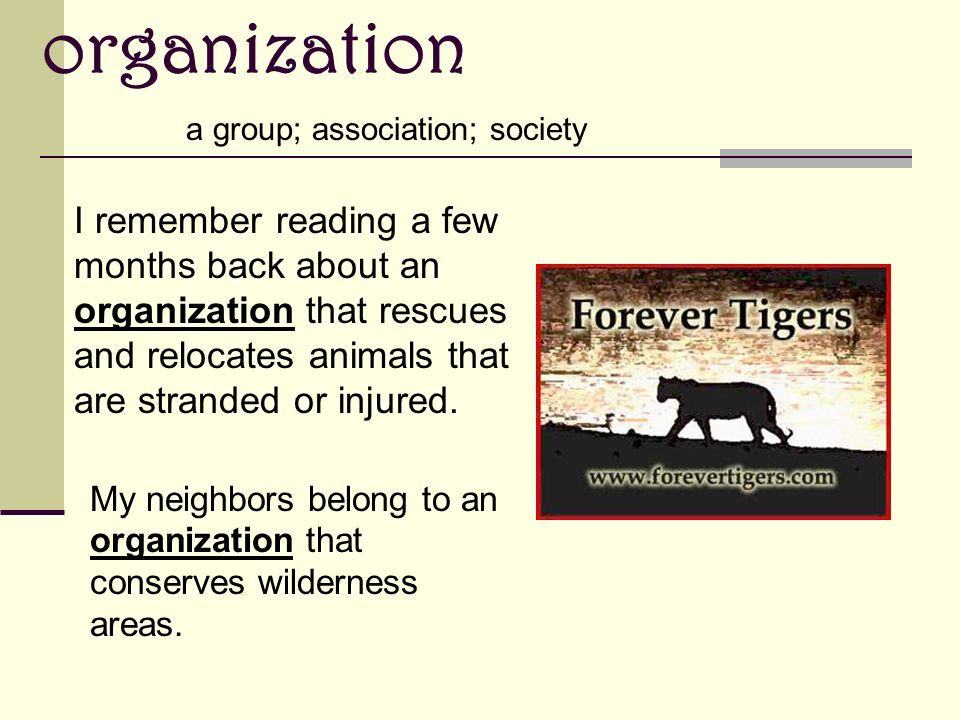 organization a group; association; society I remember reading a few months back about an organization that rescues and relocates animals that are stranded or injured.