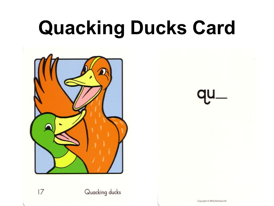 Quacking Ducks Card