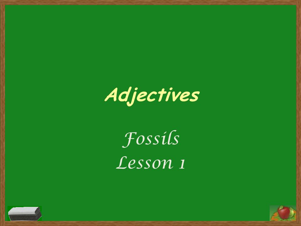 Adjectives Fossils Lesson 1