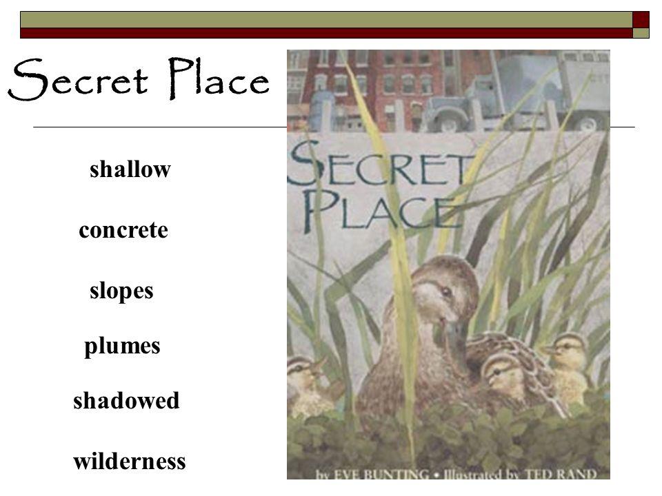 Secret Place shallow concrete slopes plumes shadowed wilderness