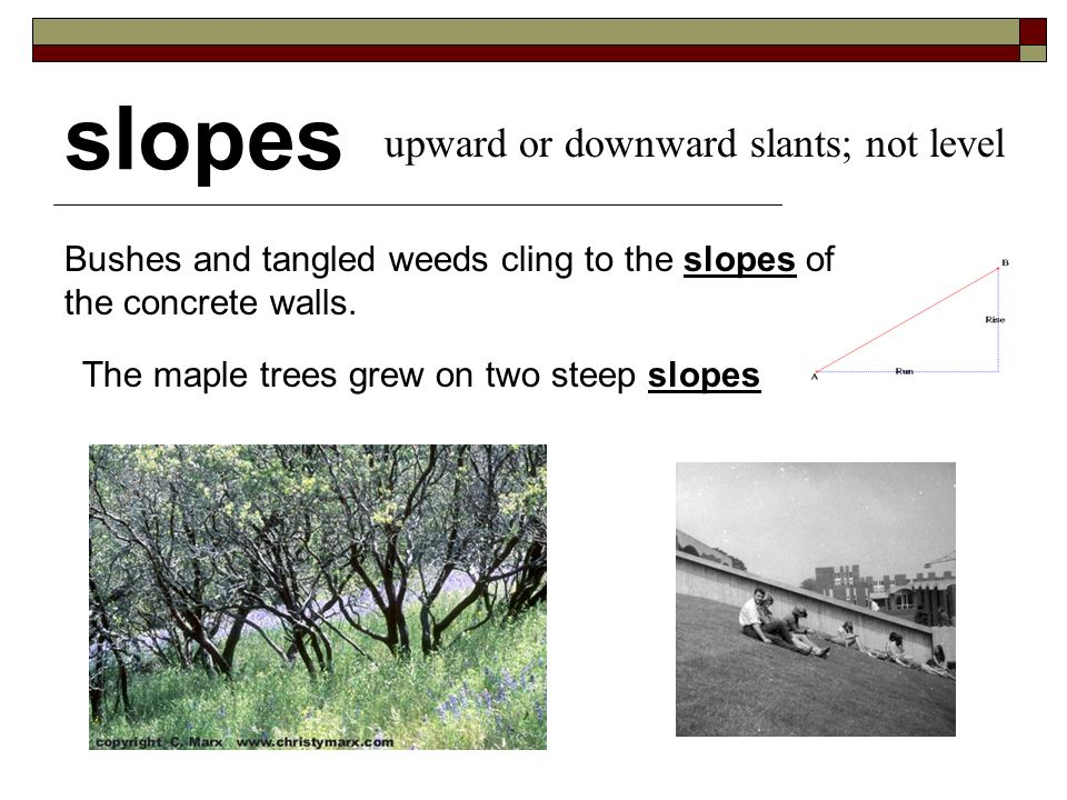 slopes The maple trees grew on two steep slopes upward or downward slants; not level Bushes and tangled weeds cling to the slopes of the concrete walls.