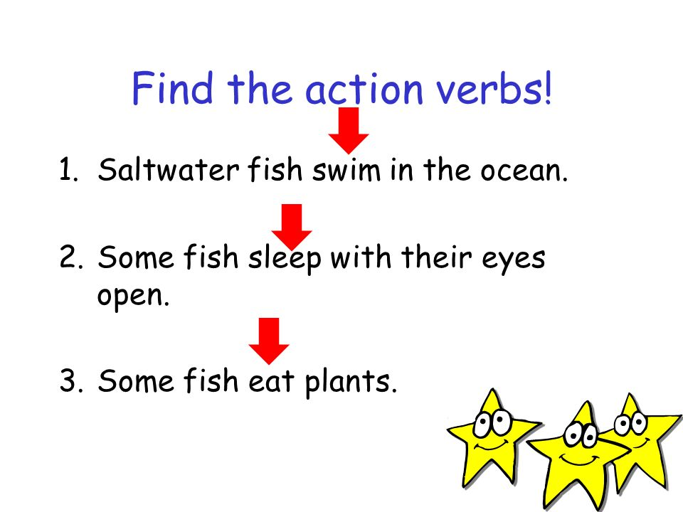 Find the action verbs! 1.Saltwater fish swim in the ocean. 2.Some fish sleep with their eyes open. 3.Some fish eat plants.