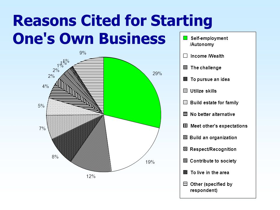 Reasons Cited for Starting One s Own Business 29% 19% 12% 8% 7% 5% 4% 2% 1% 9% Self-employment /Autonomy Income /Wealth The challenge To pursue an idea Utilize skills Build estate for family No better alternative Meet other s expectations Build an organization Respect/Recognition Contribute to society To live in the area Other (specified by respondent)