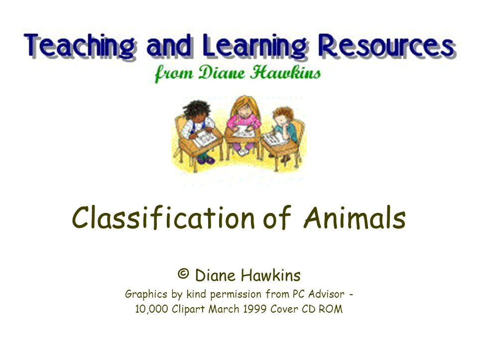 Classification of Animals Scientists have divided the Animal Kingdom into two main groups: vertebrates (animals with a backbone) invertebrates (animals without a backbone) and