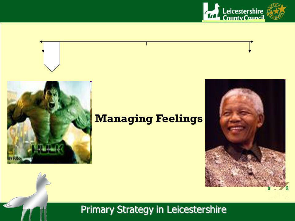 Primary Strategy in Leicestershire Managing Feelings