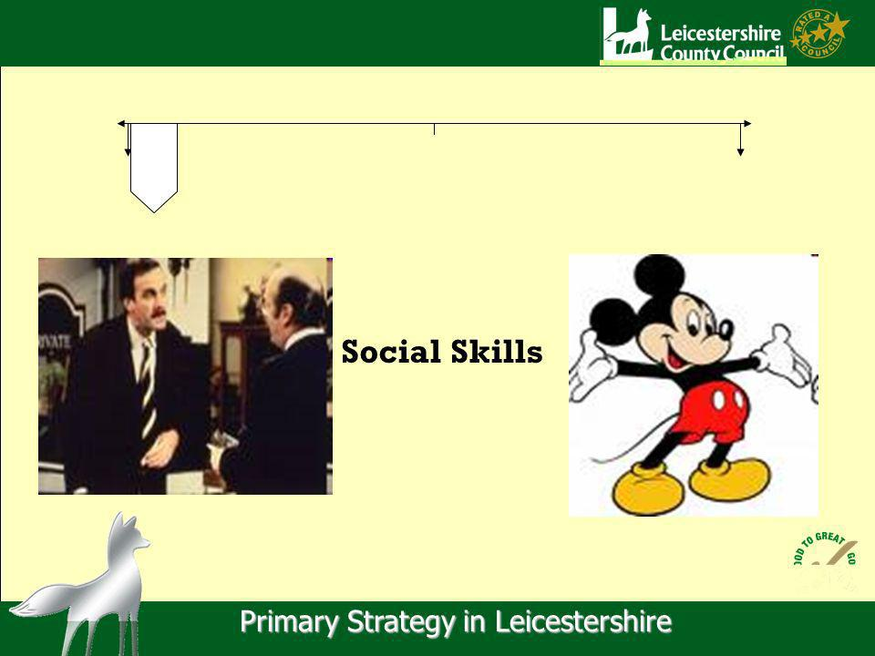 Primary Strategy in Leicestershire Social Skills