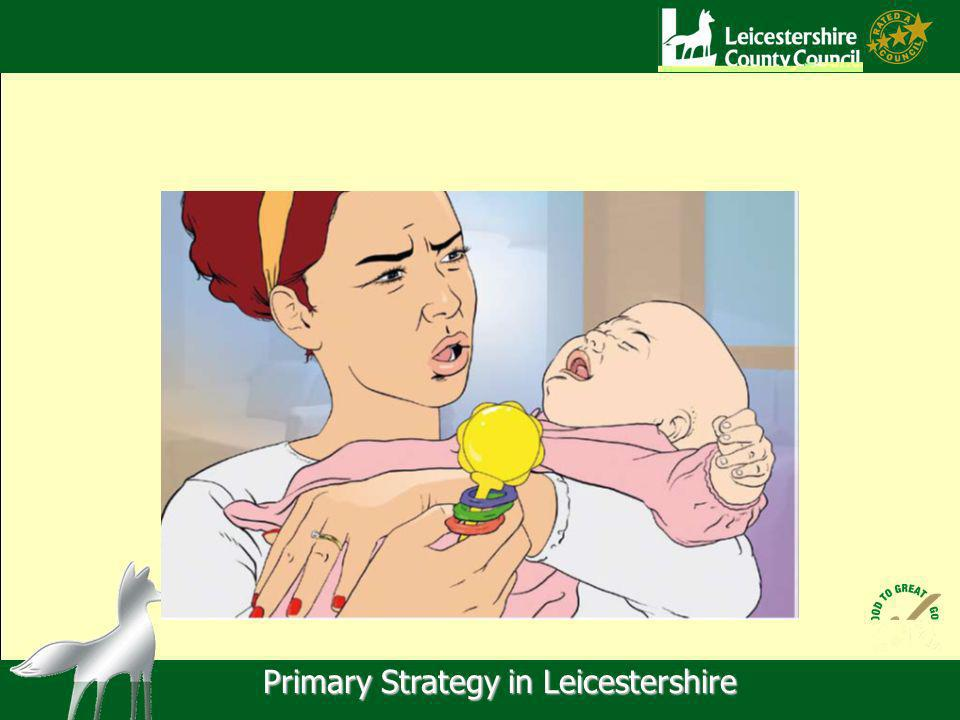 Primary Strategy in Leicestershire