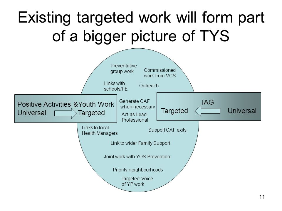 11 Existing targeted work will form part of a bigger picture of TYS Positive Activities &Youth Work Universal Targeted IAG Targeted Universal Preventa