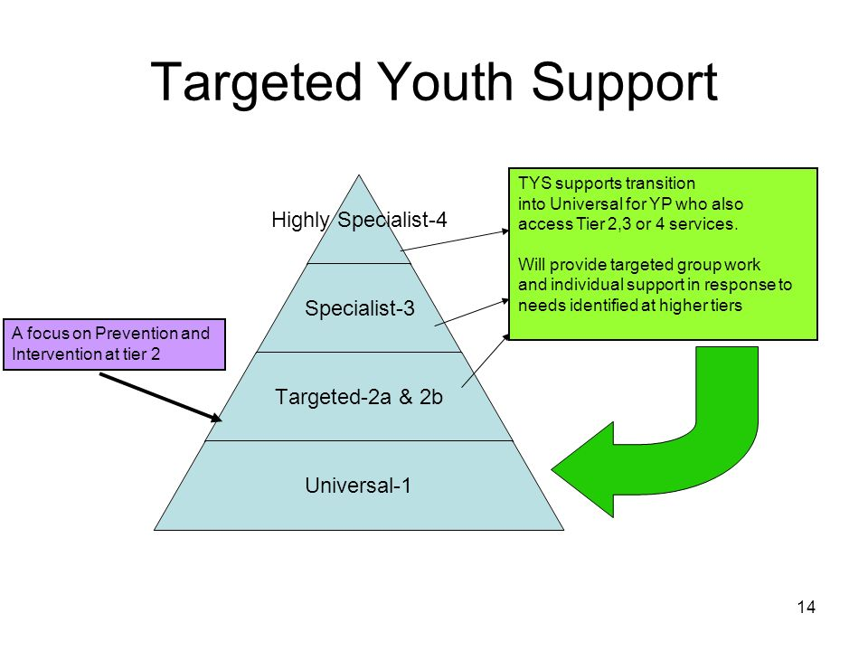 14 Targeted Youth Support Highly Specialist- 4 Specialist-3 Targeted-2a & 2b Universal-1 TYS supports transition into Universal for YP who also access