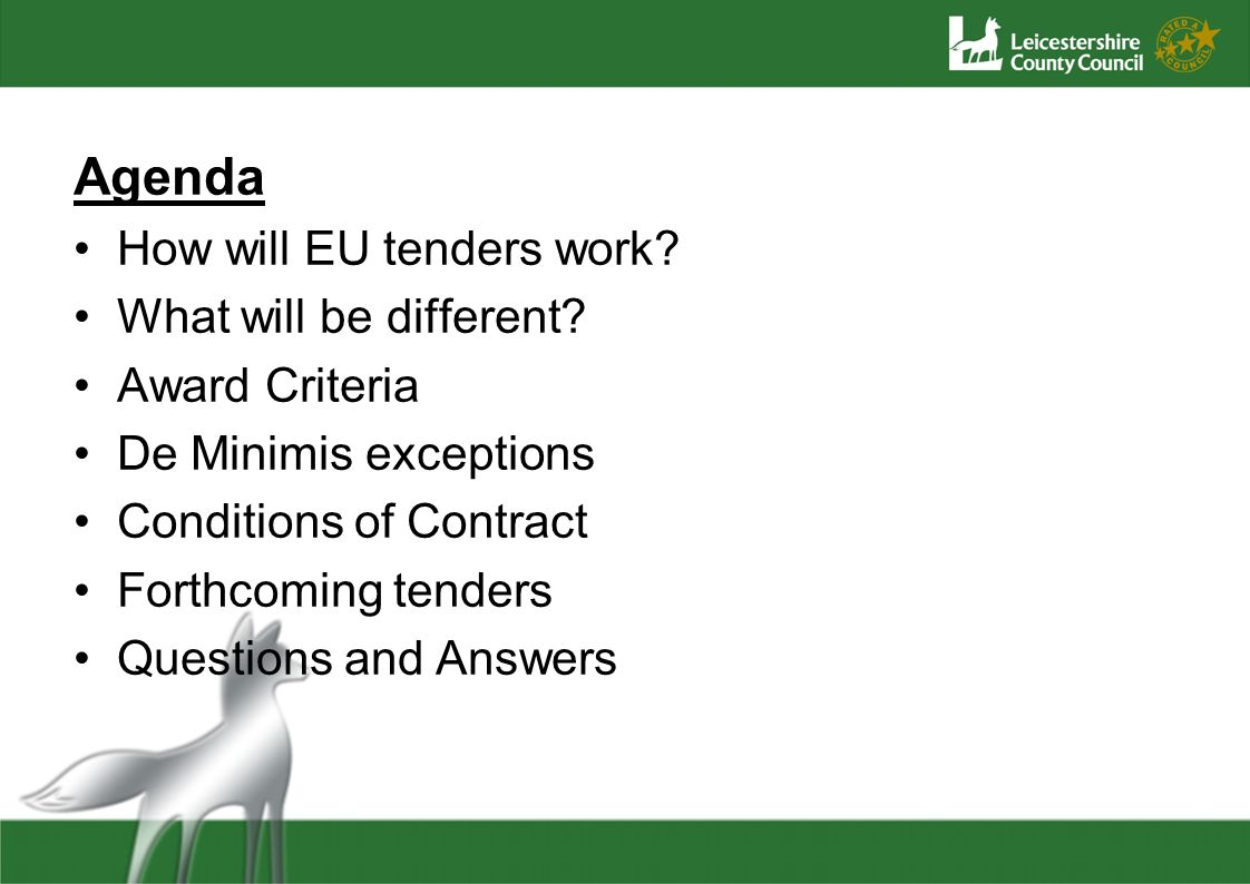 Agenda How will EU tenders work? What will be different? Award Criteria De Minimis exceptions Conditions of Contract Forthcoming tenders Questions and