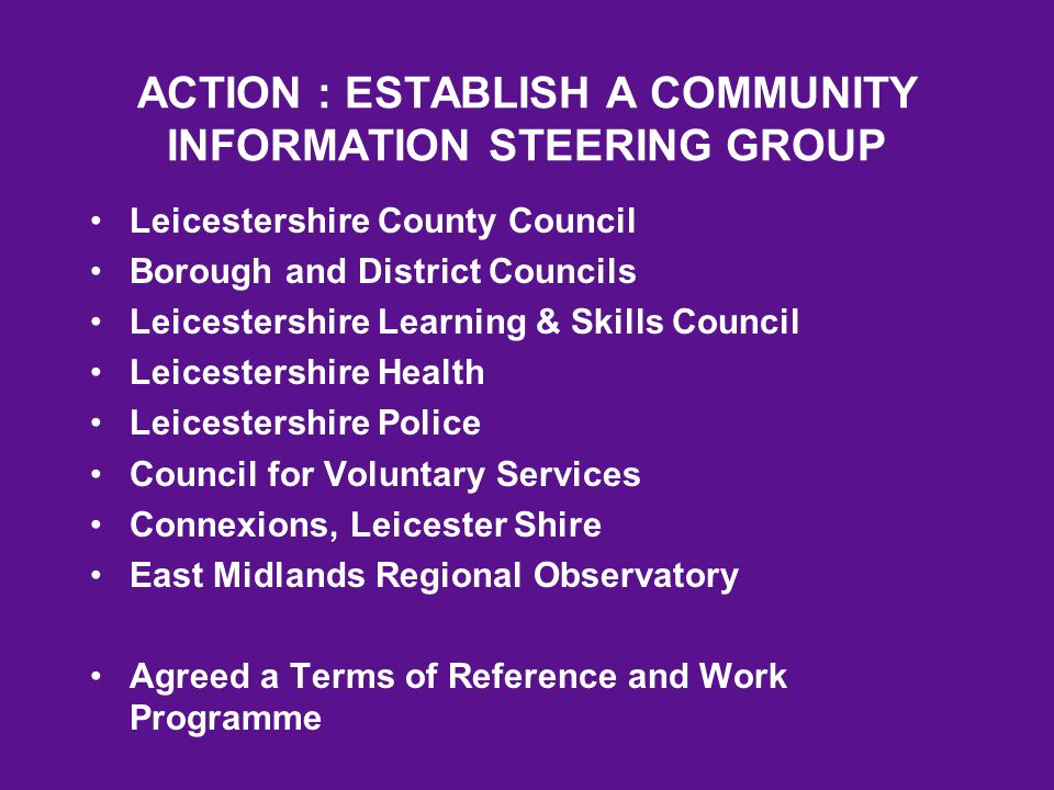 ACTION : ESTABLISH A COMMUNITY INFORMATION STEERING GROUP Leicestershire County Council Borough and District Councils Leicestershire Learning & Skills Council Leicestershire Health Leicestershire Police Council for Voluntary Services Connexions, Leicester Shire East Midlands Regional Observatory Agreed a Terms of Reference and Work Programme