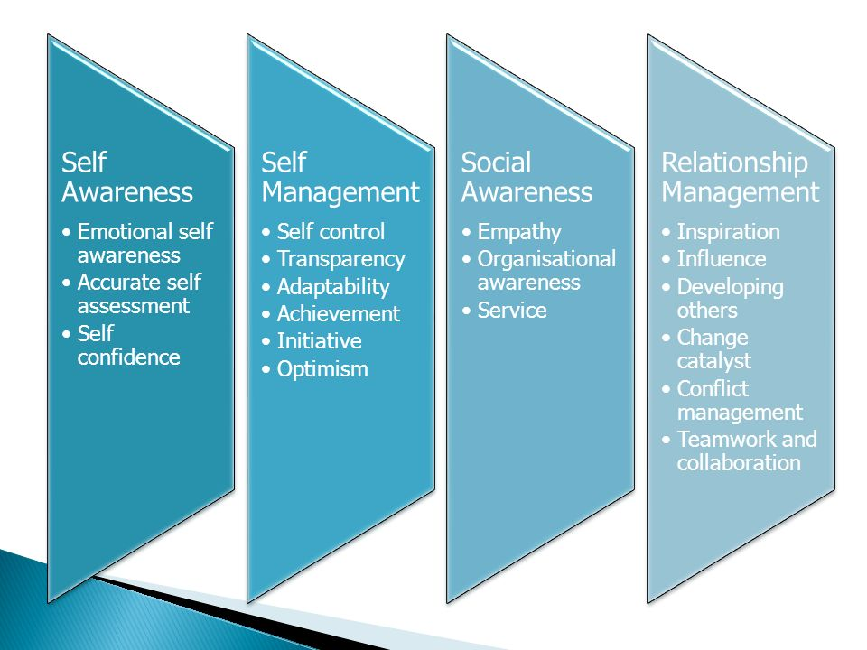 Self Awareness Emotional self awareness Accurate self assessment Self confidence Self Managemen t Self control Transparency Adaptability Achievement Initiative Optimism Social Awareness Empathy Organisational awareness Service Relationship Managemen t Inspiration Influence Developing others Change catalyst Conflict management Teamwork and collaboration
