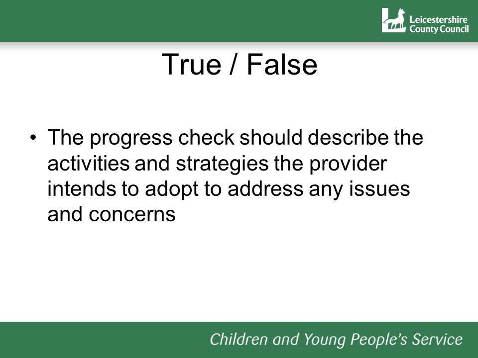 True / False The progress check should describe the activities and strategies the provider intends to adopt to address any issues and concerns