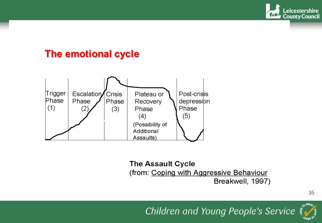 35 The emotional cycle