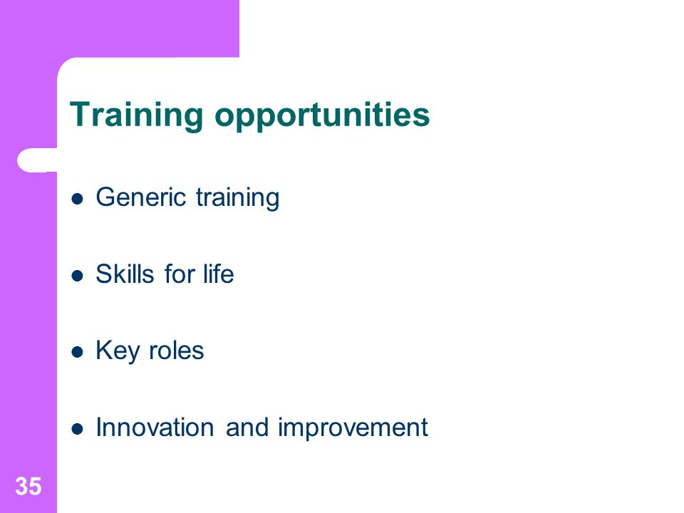 35 Training opportunities Generic training Skills for life Key roles Innovation and improvement
