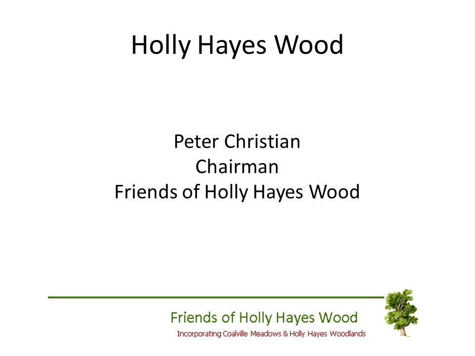 Holly Hayes Wood Peter Christian Chairman Friends of Holly Hayes Wood