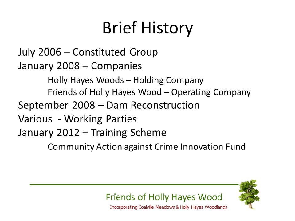 Brief History July 2006 – Constituted Group January 2008 – Companies Holly Hayes Woods – Holding Company Friends of Holly Hayes Wood – Operating Company September 2008 – Dam Reconstruction Various - Working Parties January 2012 – Training Scheme Community Action against Crime Innovation Fund