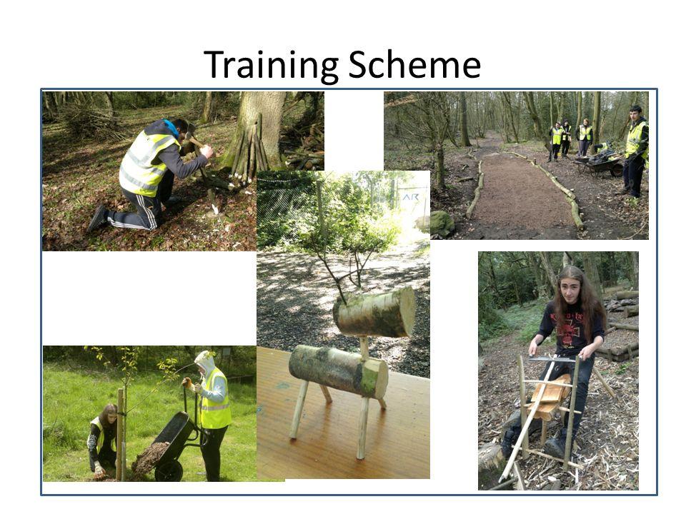 Training Scheme