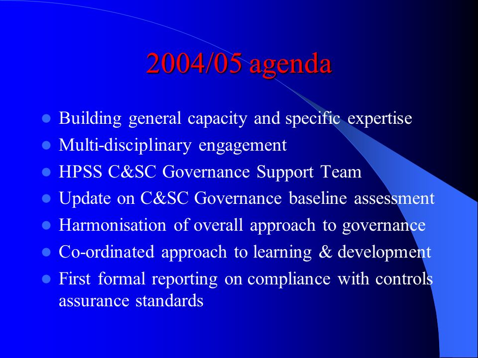 2003/04 agenda Making risk management a functioning reality Mid-term self-assessment HPSS governance and risk management adviser Website development L