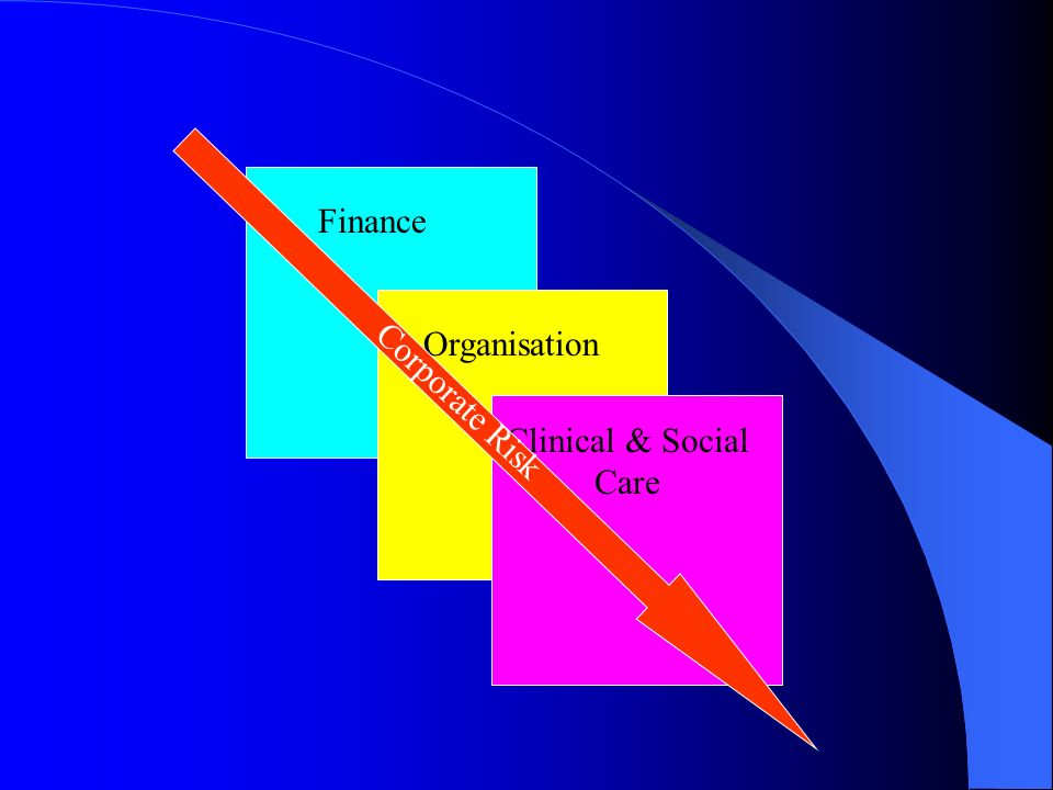 Finance Clinical & Social Care Organisation Corporate Risk