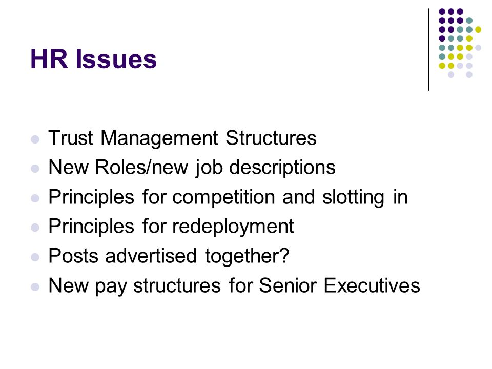 HR Issues Trust Management Structures New Roles/new job descriptions Principles for competition and slotting in Principles for redeployment Posts advertised together.