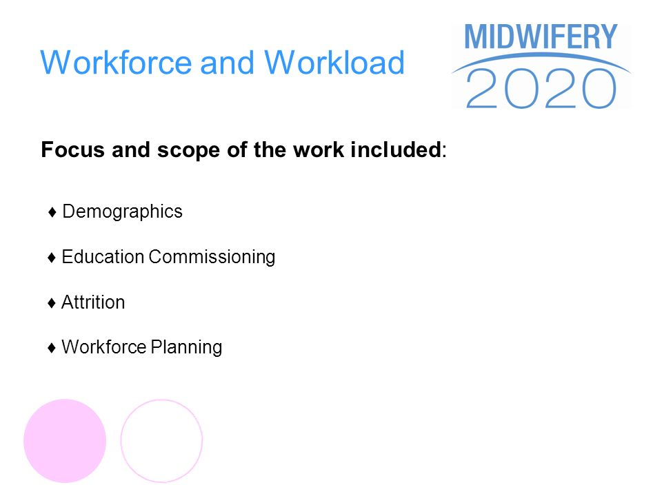 Workforce and Workload Focus and scope of the work included: Demographics Education Commissioning Attrition Workforce Planning