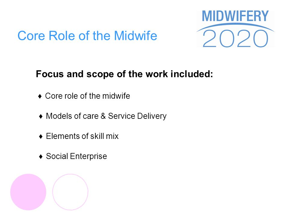 Core Role of the Midwife Focus and scope of the work included: Core role of the midwife Models of care & Service Delivery Elements of skill mix Social Enterprise