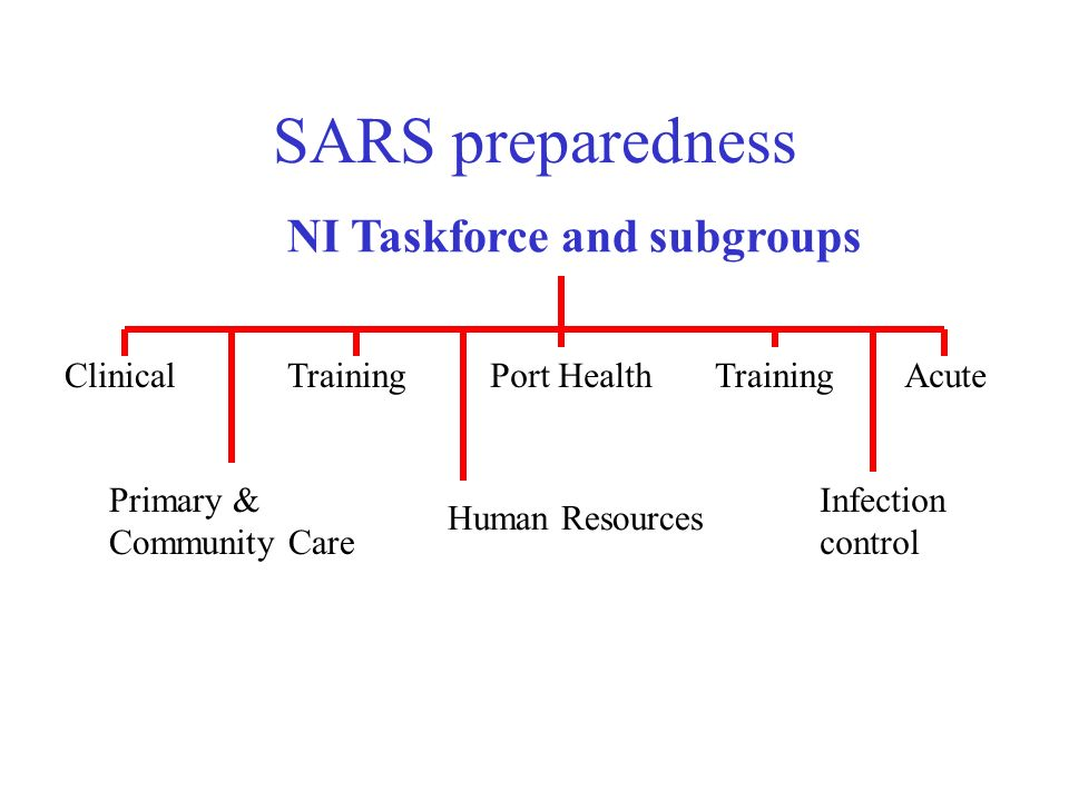 SARS preparedness NI Taskforce and subgroups ClinicalTrainingPort HealthTraining Primary & Community Care Human Resources Acute Infection control