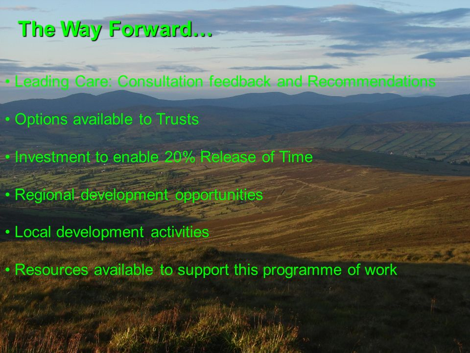 The Way Forward… Leading Care: Consultation feedback and Recommendations Options available to Trusts Investment to enable 20% Release of Time Regional