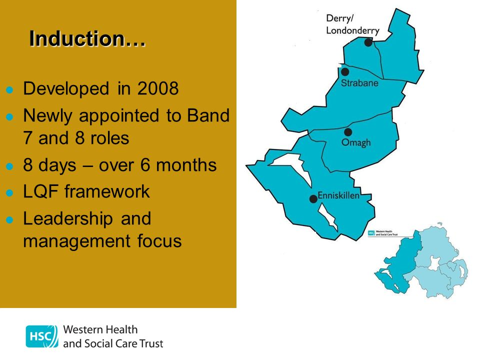 Induction… Developed in 2008 Newly appointed to Band 7 and 8 roles 8 days – over 6 months LQF framework Leadership and management focus