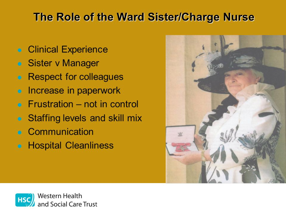 The Role of the Ward Sister/Charge Nurse Clinical Experience Sister v Manager Respect for colleagues Increase in paperwork Frustration – not in contro
