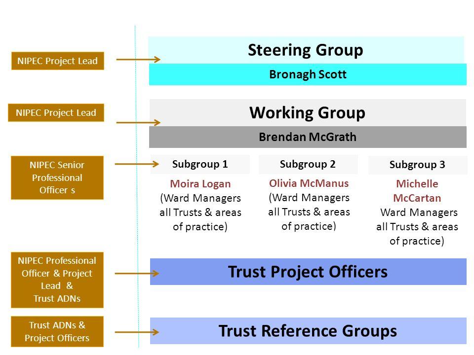 Project Groups NIPEC Project Lead NIPEC Senior Professional Officer s NIPEC Professional Officer & Project Lead & Trust ADNs Trust ADNs & Project Offi