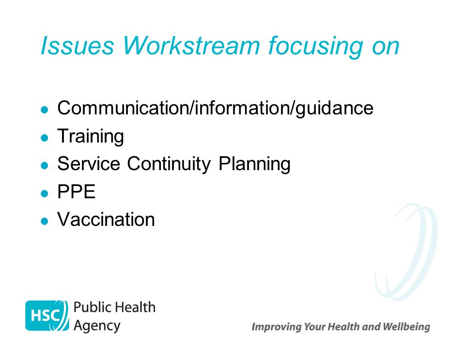 Issues Workstream focusing on Communication/information/guidance Training Service Continuity Planning PPE Vaccination
