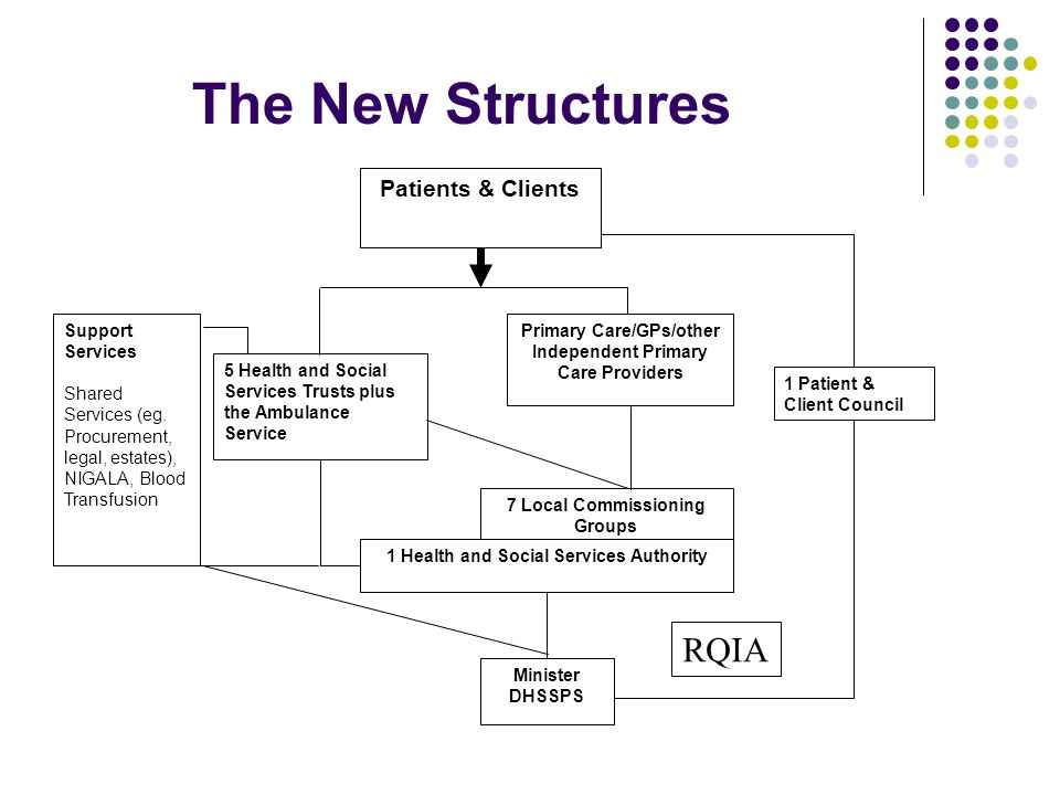 The New Structures Patients & Clients Support Services Shared Services (eg.