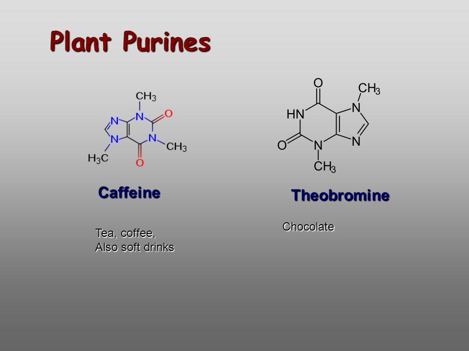 Plant Purines Theobromine Caffeine Tea, coffee, Also soft drinks Chocolate